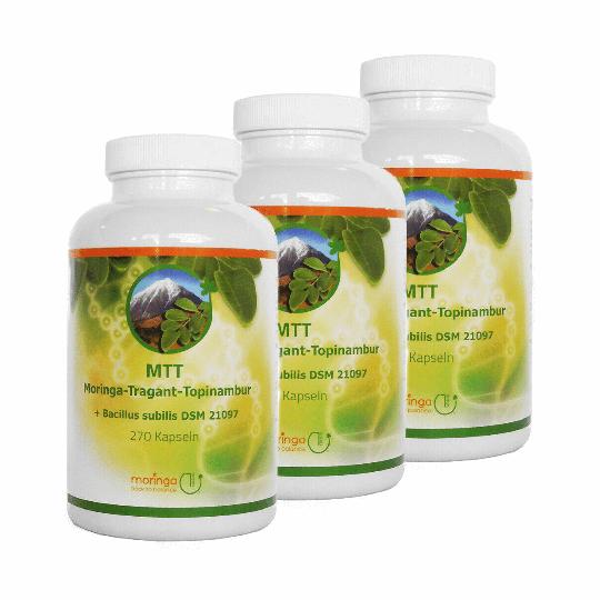 MTT-Kapseln - Moringa - Tragant - Topinambur (6 Monats-Ration) - MoringaGarden (neu mit Bacillus subtilis DSM 21097)