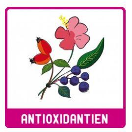 MHD* 06/20 ... Antioxidantien Pur (Bio) 125g Pulver  - LEBEPUR