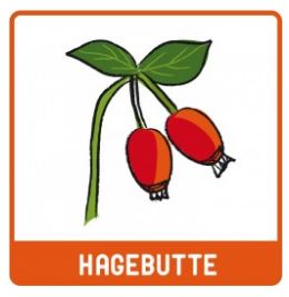 MHD* 06/20 ... Hagebutte Pur  (Bio) 150g Pulver - LEBEPUR