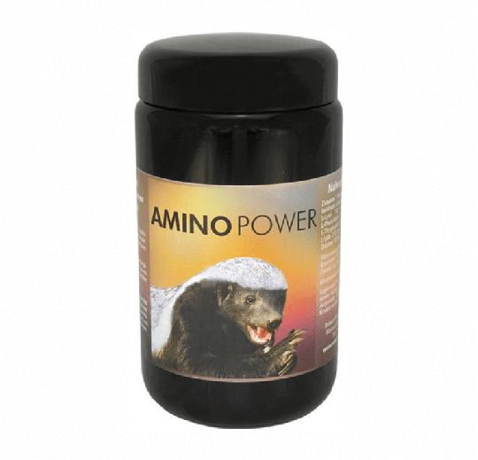 Amino Power (180 Kps.) by Robert Franz