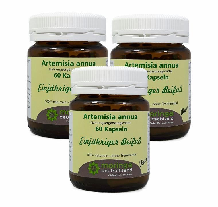 Artemisia annua Kapseln Sparpack 3x(60 Stück) - von Moringa Deutschland