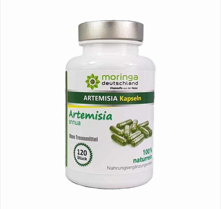 Artemisia annua Kapseln (120 Stück) - von Moringa Deutschland